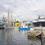 Hafen von Bergen